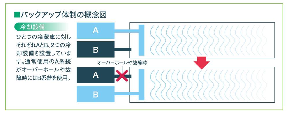 バックアップ体制の概念図